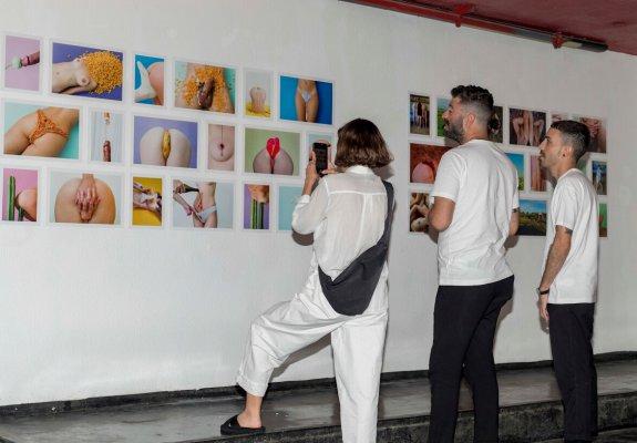 עופר דבוש תערוכה